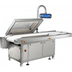 Zermat Vacuum Packaging Machine CV-910