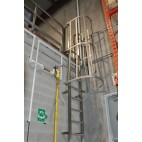 Stainless Steel Ladder With Safety Cage